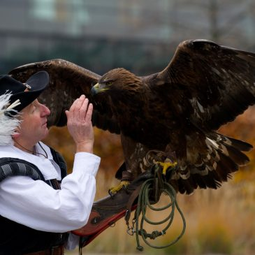 VIDEO: Ever Wanted To Fly Like An Eagle?